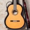 Alhambra Luthier Ziricote  50  Aniversario