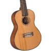 Diamond Head Ukulele DU-400C Concert Cedar & Flamed Maple